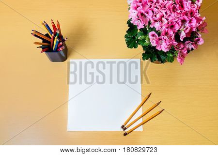 Sheet of blank paper colourful pencils and pelargonia flower on desk