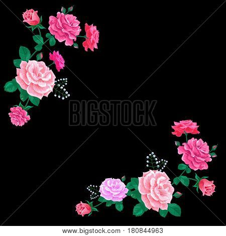 Roses with leaves and buds on the black background.Vector illustration with pink flowers.Greeting card for mother's day, birthday, anniversary, wedding and other holidays.