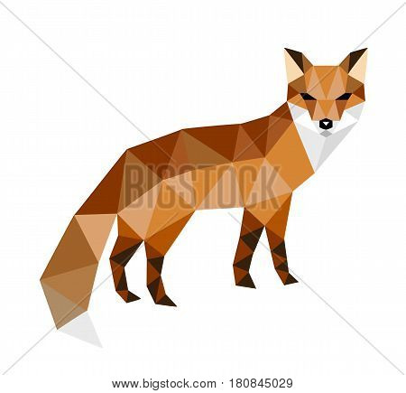 Polygonal colorful fox isolated on white background
