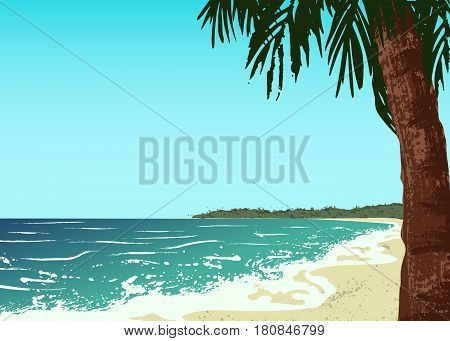 Poster of sand beach with palm and ocean