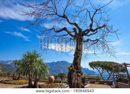 Italy Amalfitana Coast Ravello the Villa Rufolo garden