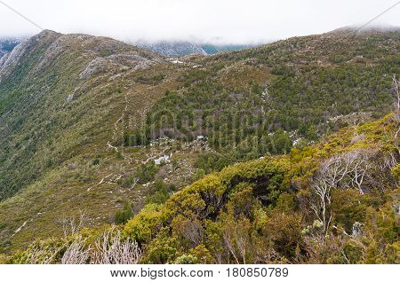 Highland Landscape With Green Forest And Hiking Track