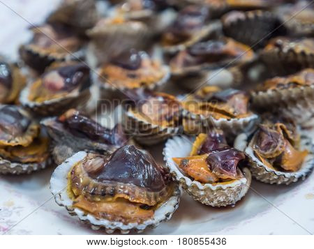 Grilled scallop, cockle shell, seafood meal on plate