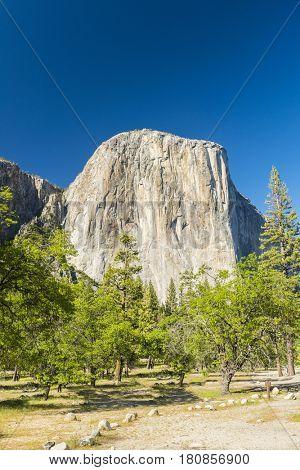 El capitan granite rock seen from the Yosemite Valley, Yosemite National Park, USA