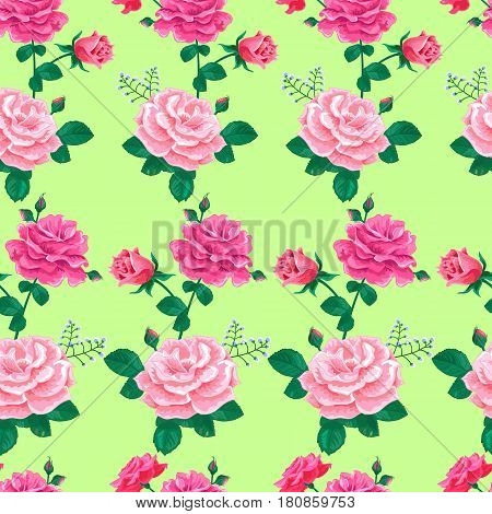 Seamless pattern with large realistic pink roses on a soft light green background.Vector illustration.Summer floral vector illustration for prints, book covers, textile, fabric, wrapping gift paper