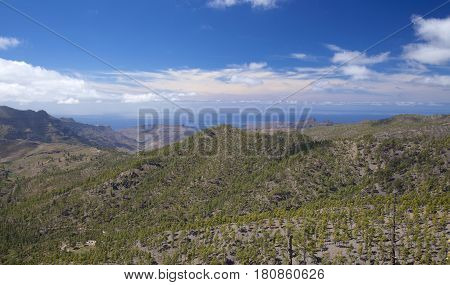 Central Gran Canaria protected area of Integral Nature Reserve Inagua pine forest