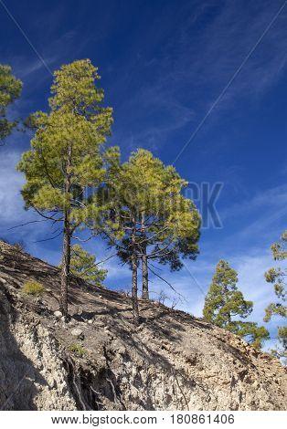 Central Gran Canaria, Nature Reserve Inagua