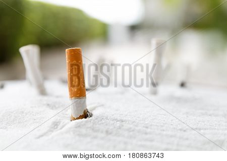 Cigarette butt in ashtray on outdoor blur background