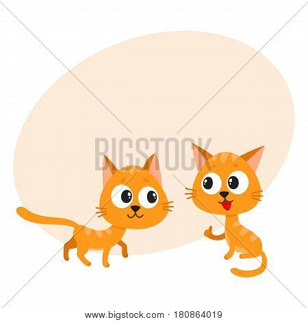Two cute and funny, naughty, playful red cat characters playing together, cartoon vector illustration with space for text. Couple of curious, mischievous, naughty red cat characters poster