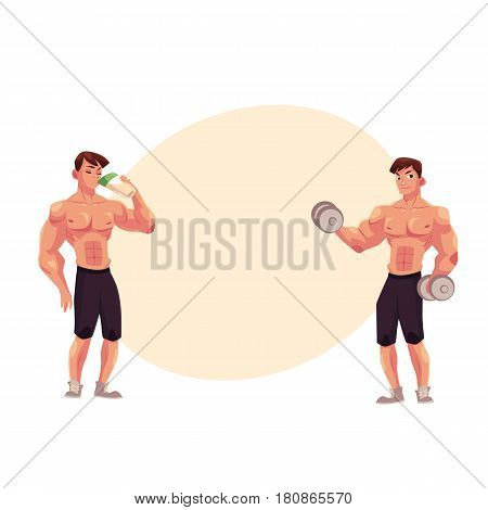 Man bodybuilder, weightlifter working out with dumbbells and drinking protein shake, cartoon vector illustration with space for text. Man bodybuilder with dumbbells and drinking protein