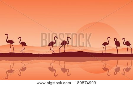 Silhouette of flamingo with reflection on the lake scenery vector