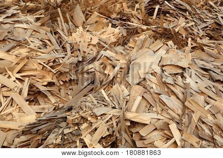 Huge pile of wood waste