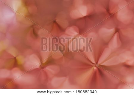 Dreamy Soft Glow Romantic Mood Abstract Sparkle Spring Blossom Pink Aweet Background