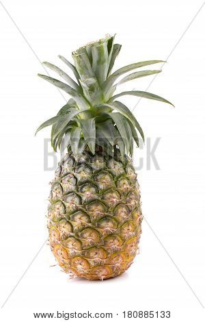 pineapple on a white background in the studio
