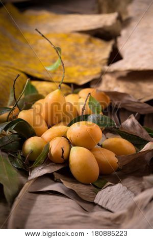 Plango fruit or Marian Plum tropical southeast asia fruit on old wooden background.
