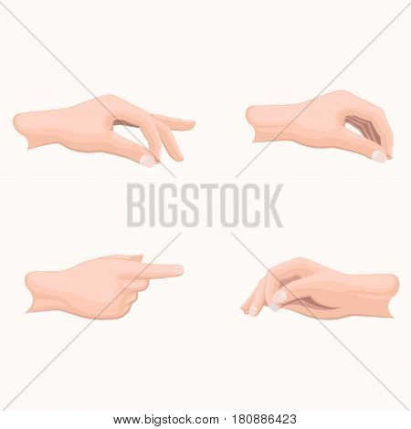 Human palms holding gestures set. Man hand in various positions with gathered together fingers and put forward in pointing gesture forefinger flat vectors set isolated on white for business concepts