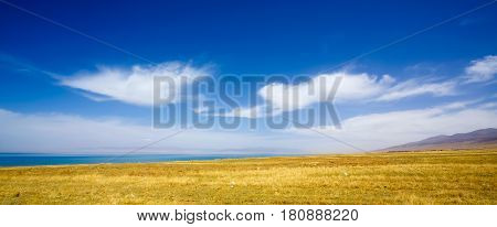 Beautiful lake and yellow fields scenery in Tibet .