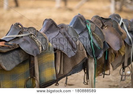 Old horse saddles hang on the fence in a row