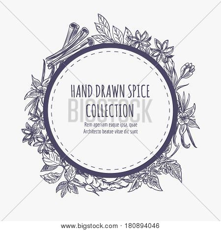Hand drawn spice collection round banner or frame design. Kitchen dcorative element vector illustration