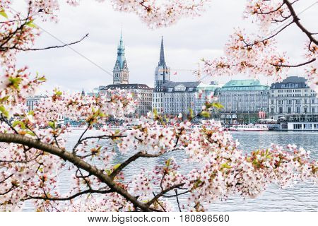 Beautiful view of Hamburg townhall - Rathaus and Alster river at sunny spring day.