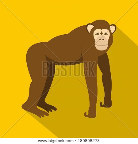 Brown monkey standing on its four legs icon. Flat illustration of brown monkey standing on its four legs vector icon for web