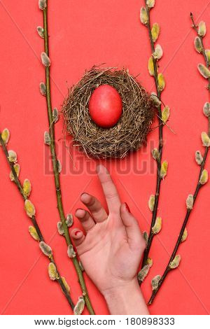 Hand With Red Painted Easter Egg In Nest Near Willow