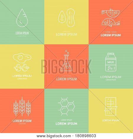 Food allergen logotypes. Food intolerance icons for restaurants, farm markets and menu. Special diet illustration. Vector line series.