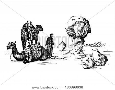 desert landscape with arab and camel next to statue face, touristic hand drawn illustration of exploring in the dust, old arabic man on camelback.