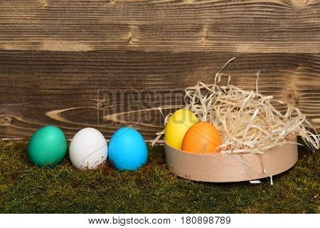 Painted Easter Colorful Eggs In Wooden Box On Wood Background