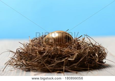Bird Nest With Traditional Painted Golden Egg, Banking, Easter