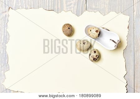 Quail Eggs In White Bath Tub With Paper, Easter Holiday