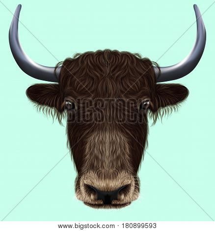 Illustrated portrait of Domestic yak. Cute fluffy brown face of Bovid on blue background.