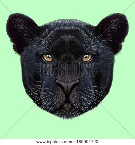 Illustrated portrait of Black panther. Cute fluffy face of Big cat on green background.