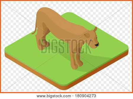 lioness isometric isolated on transparent background vector.