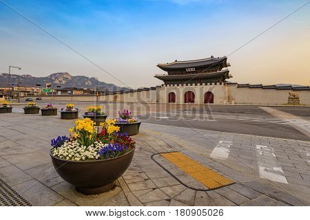 Spring in Seoul city at Gwanghwamun Gate Seoul South Korea