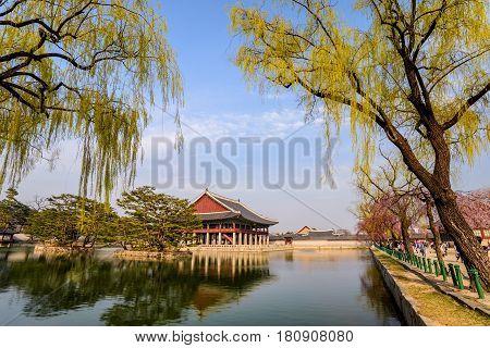Spring at Gyeongbokgung Palace Seoul South Korea