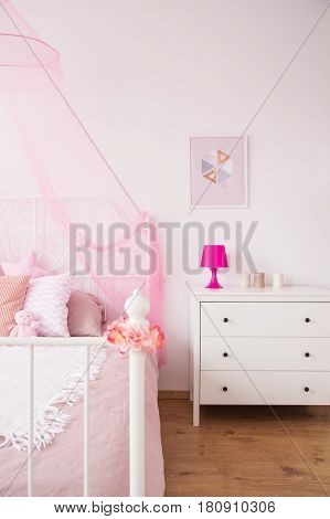 Commode And Conopy Bed