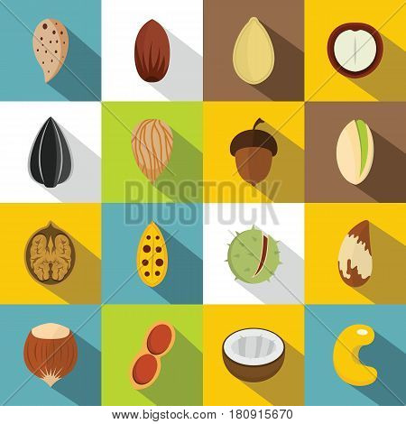 Nuts icons set. Flat illustration of 16 nuts vector icons for web
