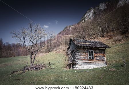 Cottage in a meadow. The chalet is surrounded by the forest.
