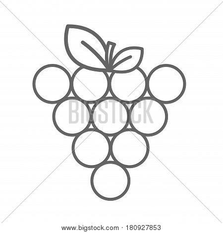 figure grapes fruit icon image, vector illustration design stock