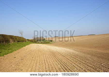 Chalky Plowed Soil In Springtime