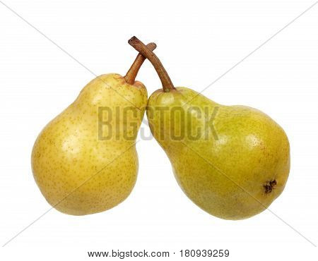 Two pears isolated on a white background