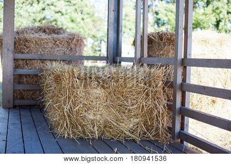 Eco clear hay bale. Agriculture field Wheat yellow golden harvest in summer