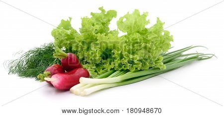 Set of different vegetables isolated on white.