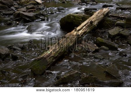 A fallen log lays near the flowing waters of Wolf Creek in Vogel State Park near Brownsville, Georgia