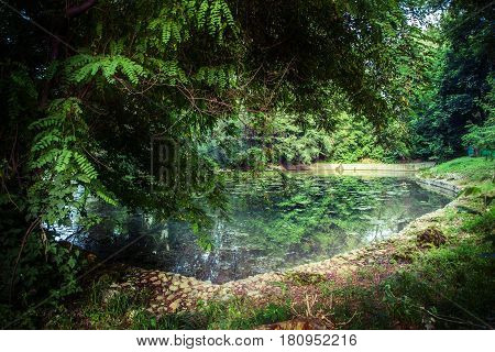 Landscape with pond and trees in Almaty zoo, Kazakhstan