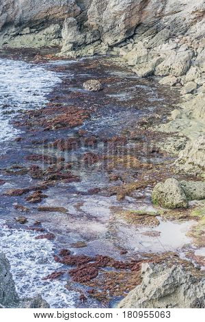 Tide Pools: a shot of ocean water rushing into colorful  tide pools