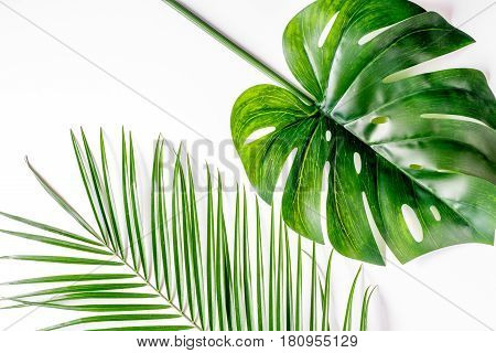 spring with morden green herbal pattern on white desk background top view