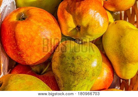 cox apples and blush and conference pears