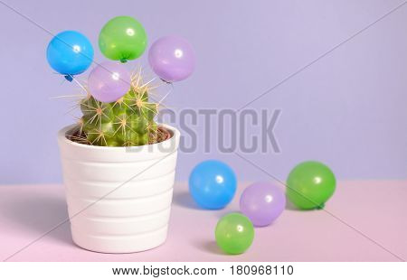 Abstract cactus in pot and small balloons